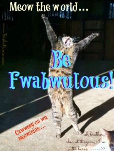 cat fabulous