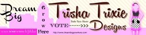 Dream Big Vote Trisha Trixie Banner